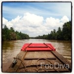 Riverboat cruising Mekong Delta